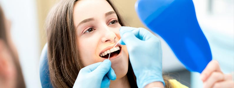 Dental insurance header